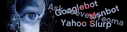 ¿Cómo ven los buscadores nuestras páginas web?